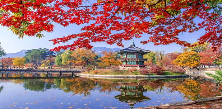 Cảnh đẹp Hàn Quốc