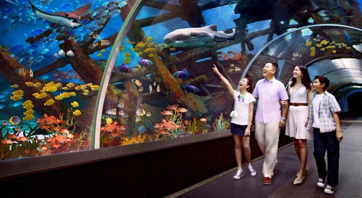 Sea Aquarium Singapore Malaysia