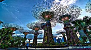 Siêu Cây Khổng lồ Singapore