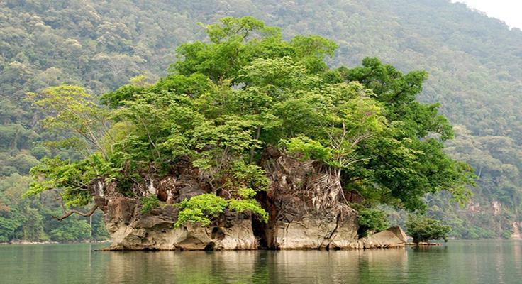 Đảo Bà Góa
